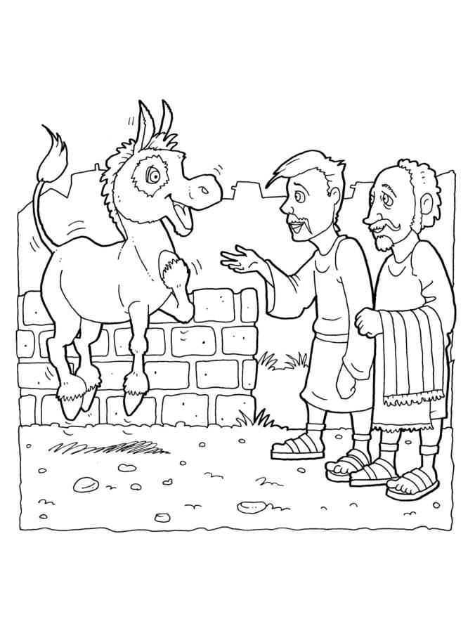 Donkey 3-1