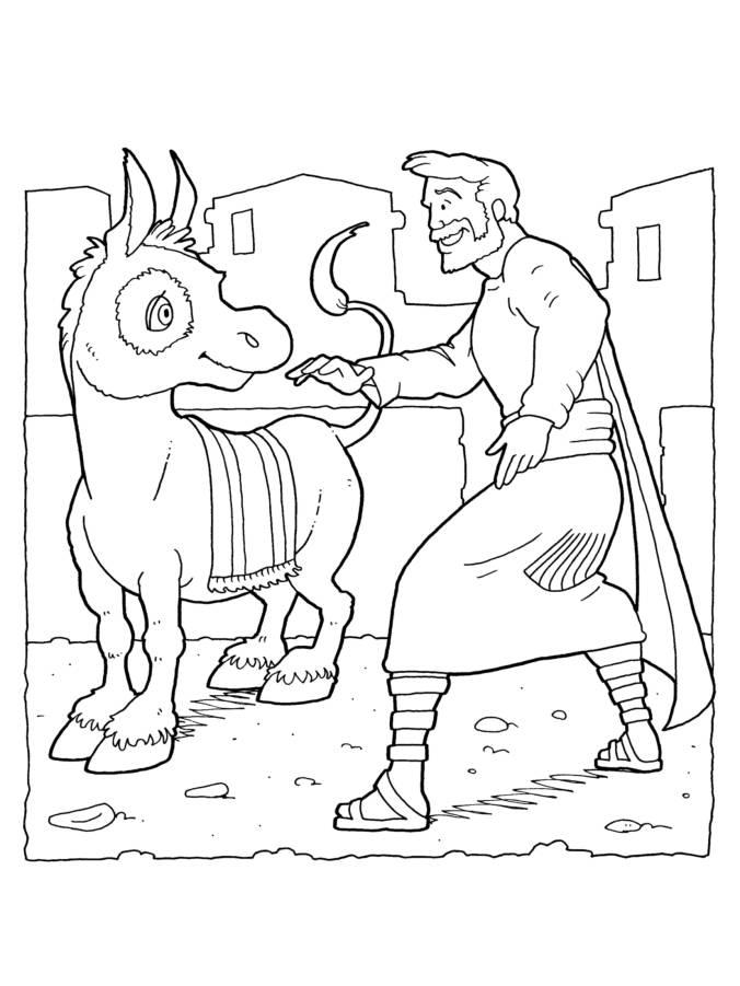 Donkey 4-1