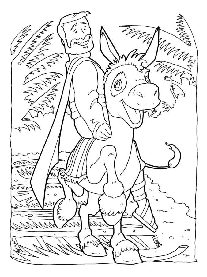 Donkey 5-1