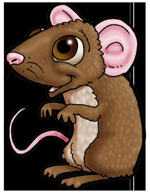 فأر من حيوانات المذود