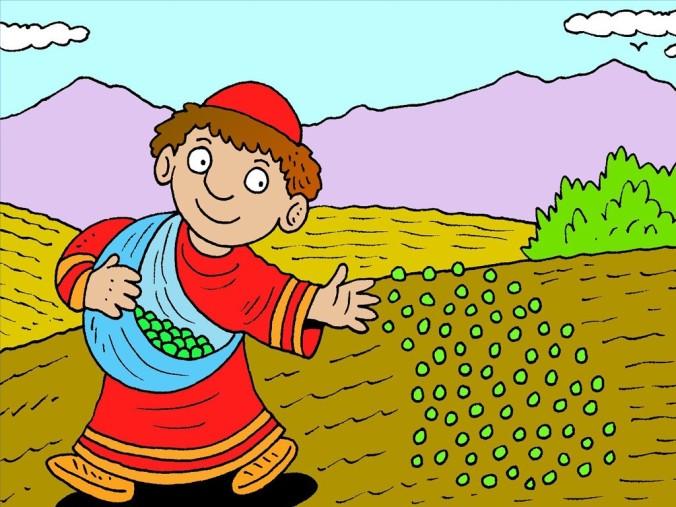 2_FB_LS_Wheat_Tares_1024
