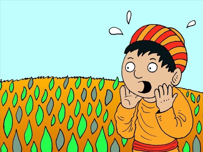 4_FB_LS_Wheat_Tares_1024